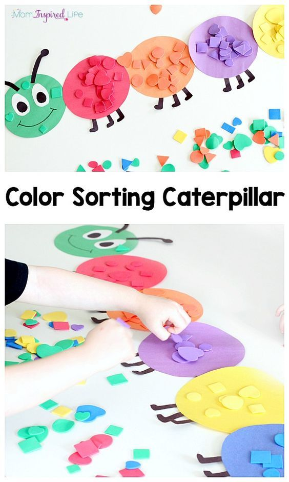 Colour sorting catepillar